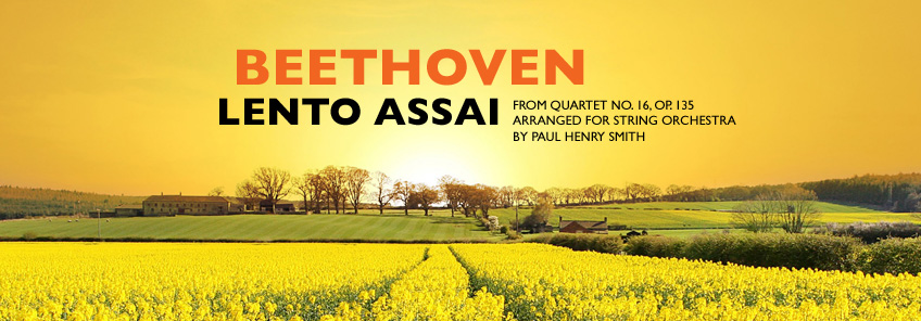 New Beethoven arrangement for string orchestra